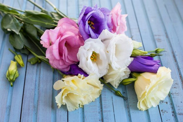 Top 5 DIY Flower Arrangements That You Can Gift To Someone